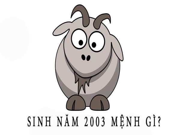 2003 mệnh gì