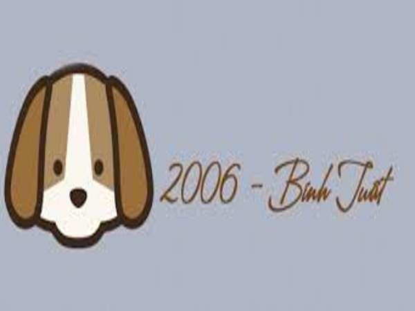 2006 mệnh gì