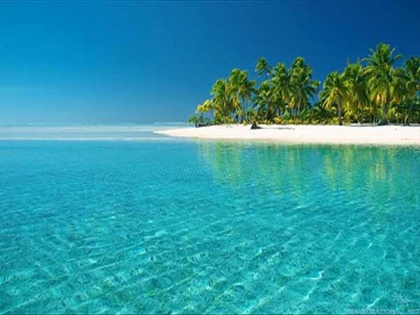Nằm mơ thấy biển, bài biển đánh số mấy trúng độc đắc?