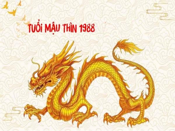 Tuổi Thìn 1988 Khai Trương ngày nào tốt